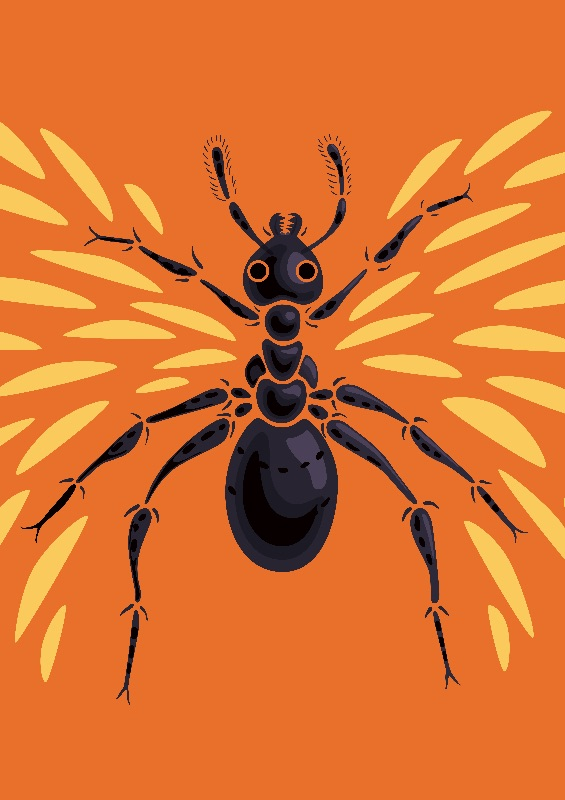 Weird Flying Ant Orange