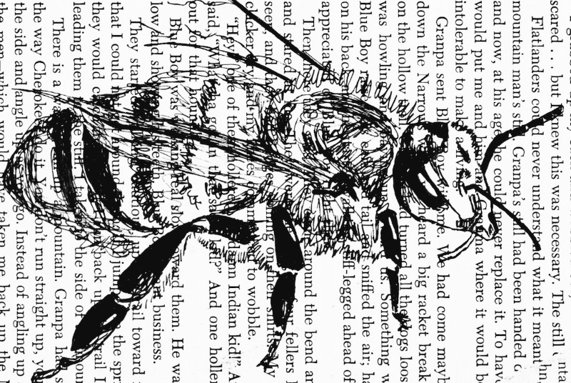 Bee Book Page