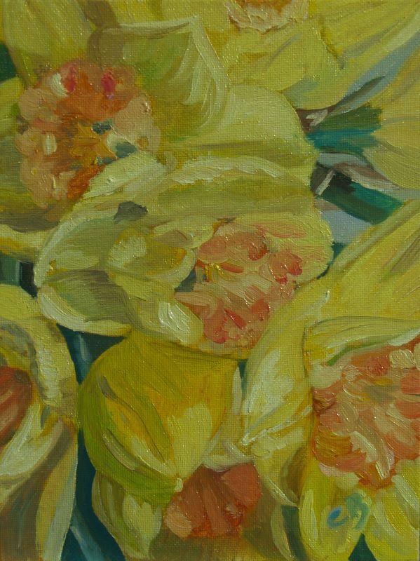 Proud Daffodils