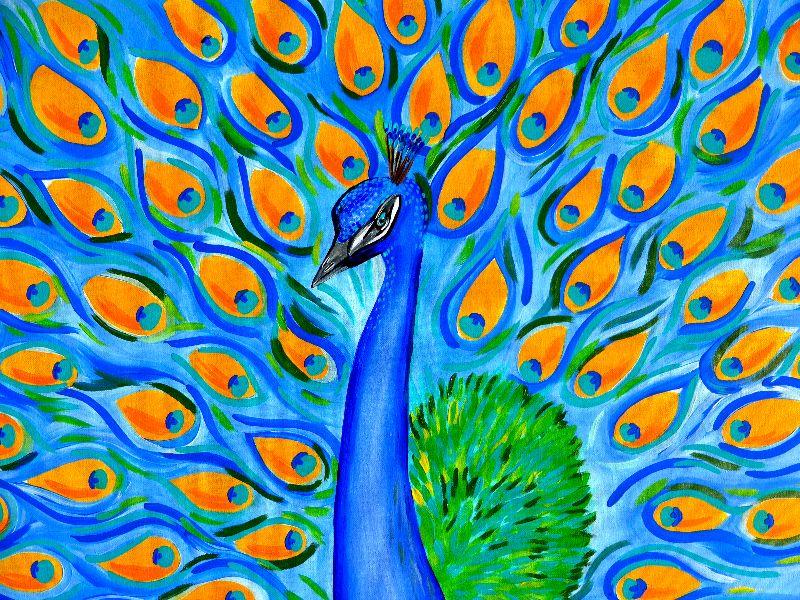 Peacock with Aqua