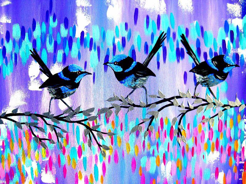 Violet Fairy Wren Glen