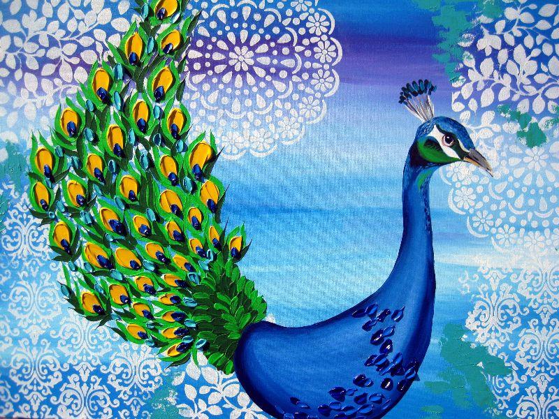 peacock splendor
