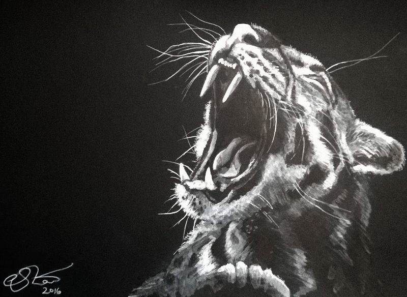Monochrome Leopard