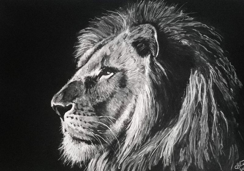 Monochrome Lion