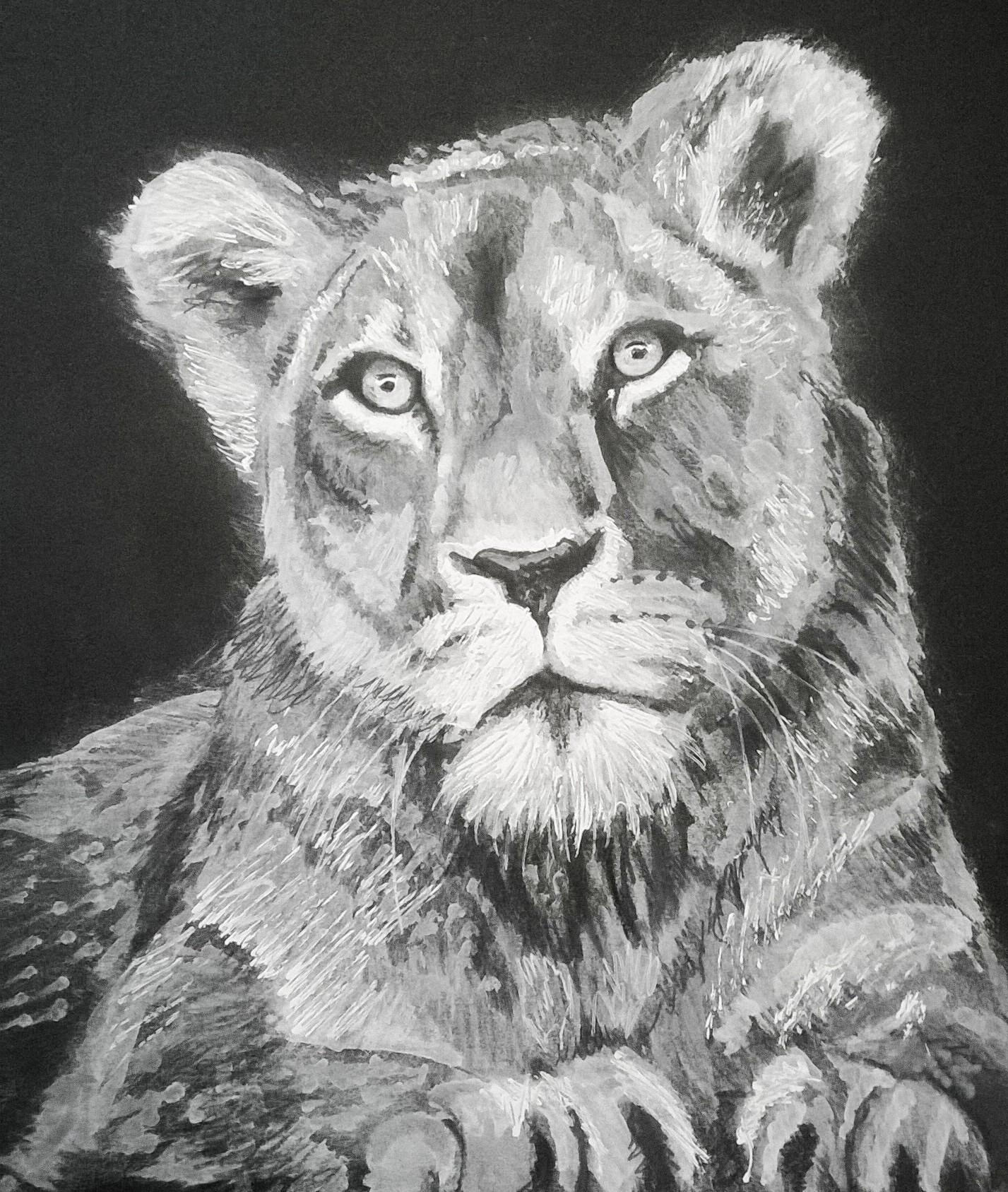Monochrome Lioness