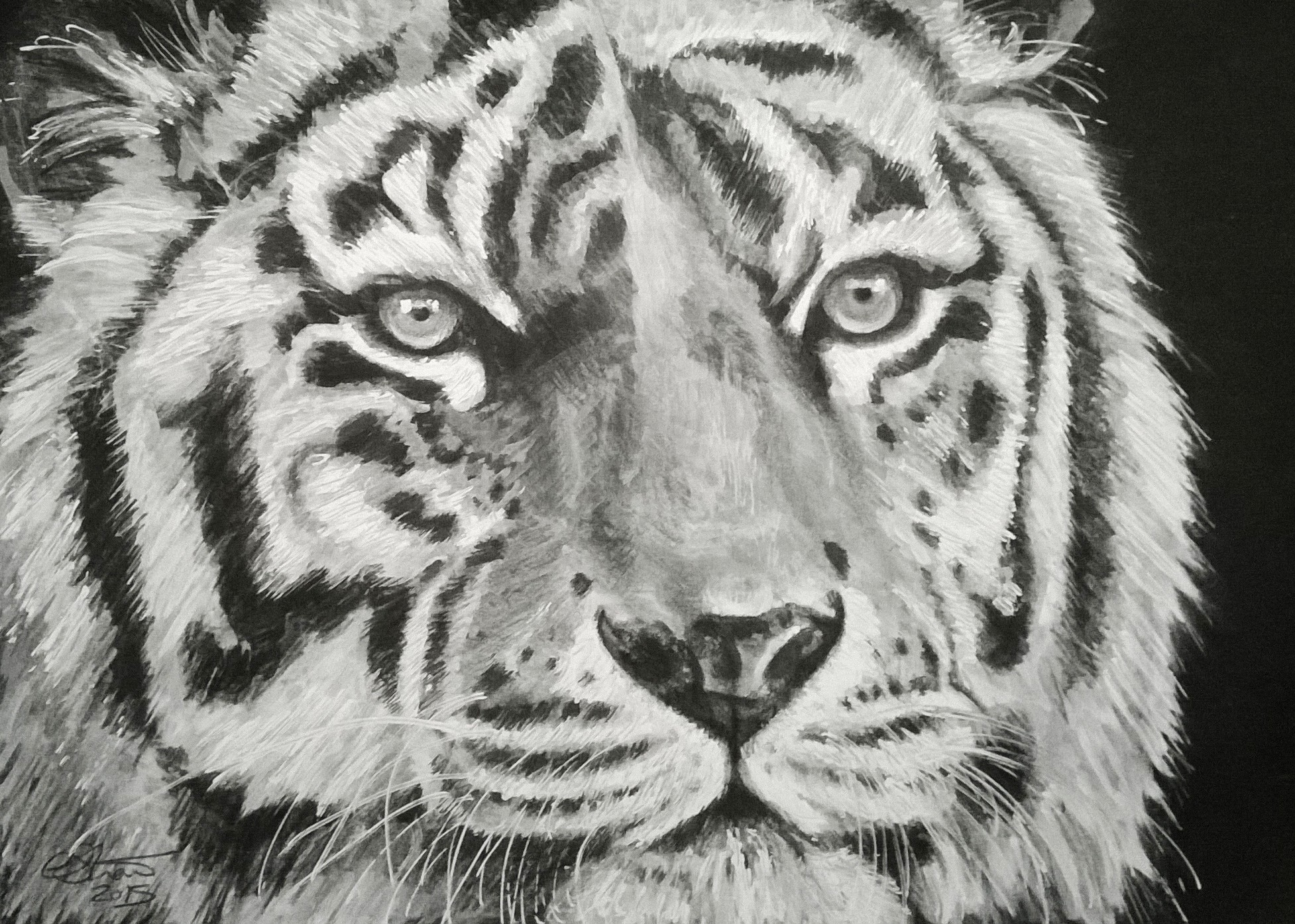 Monochrome Tiger