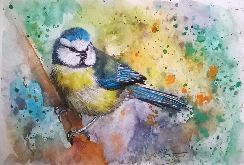 Watercolour Bluetit