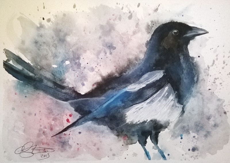 Watercolour Magpie