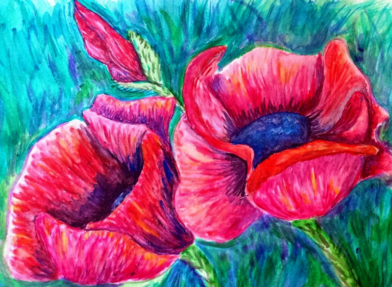 Poppy in acrylic ink