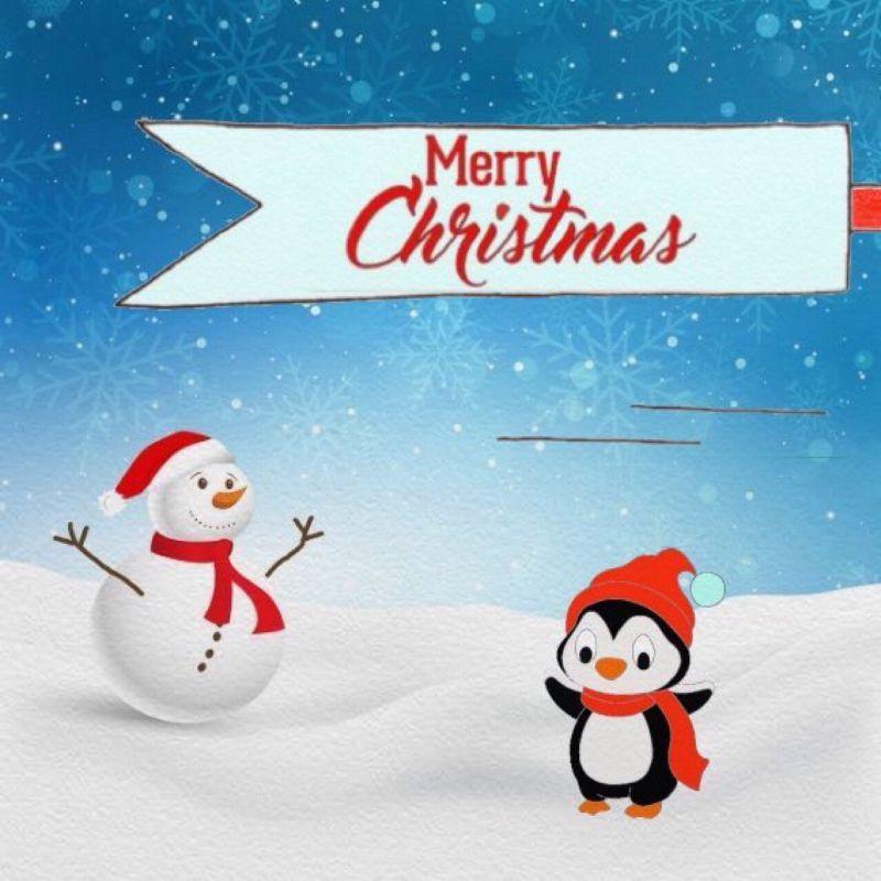 Penguin on Christmas day