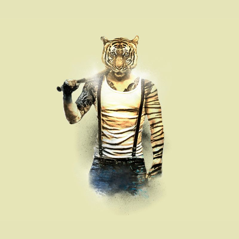 Blizzard Tiger