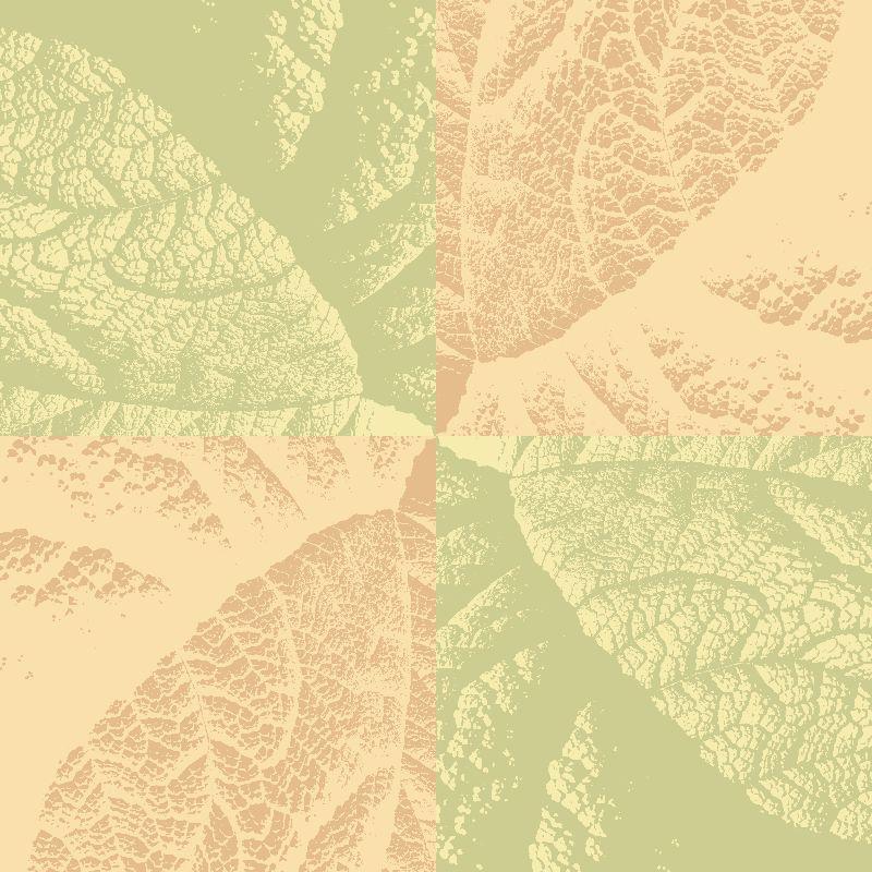 Leaf texture study  pale