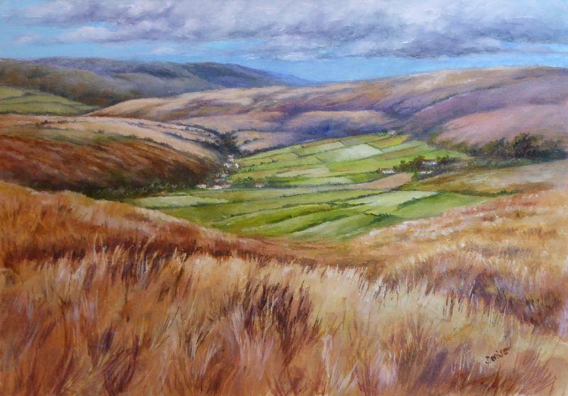 Northumberland Moors