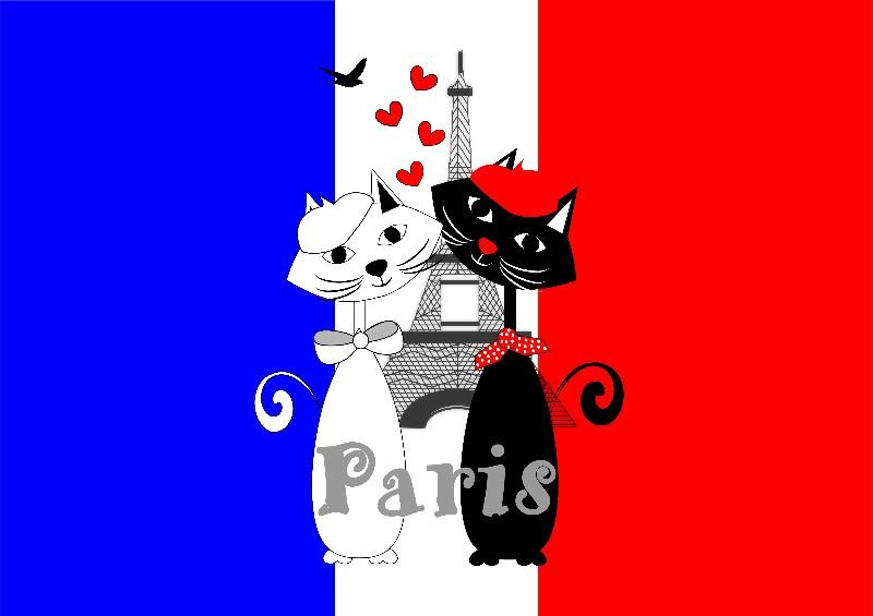 Cool Cat Lovers In Paris