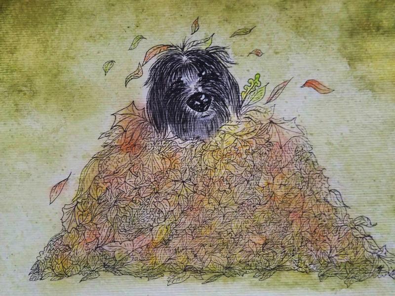 Autumn Frolics