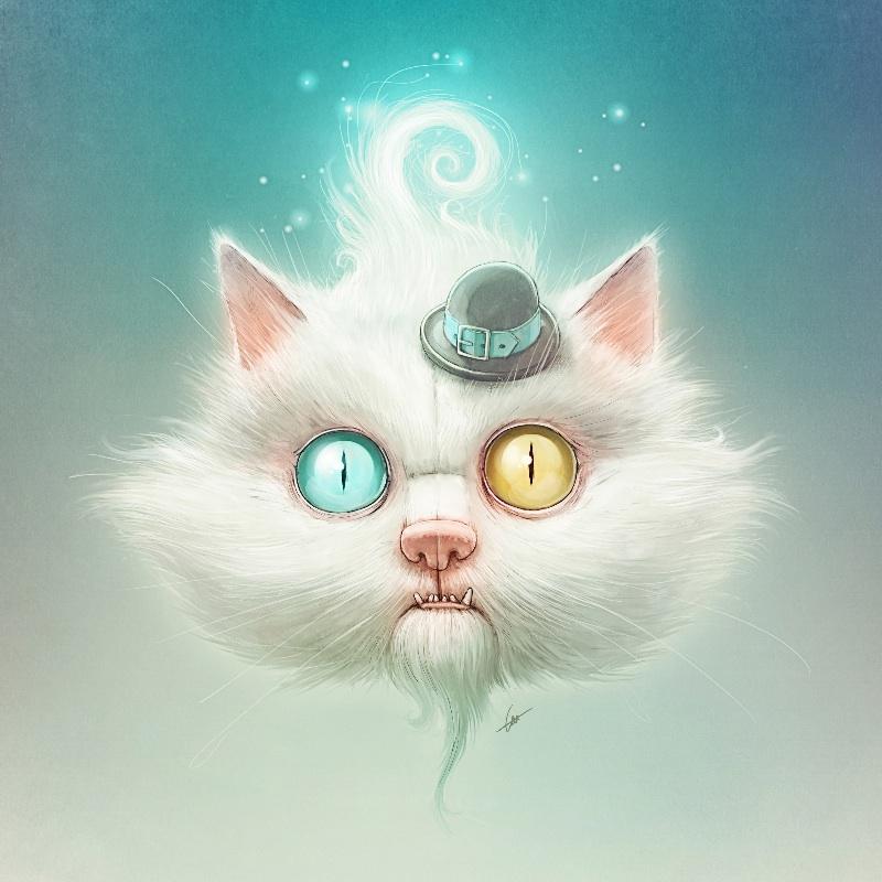 Odd Kitty