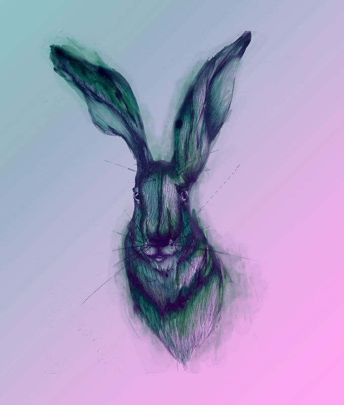Blue Hare in Pink