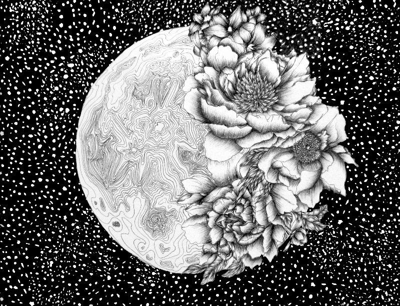 Moon Abloom