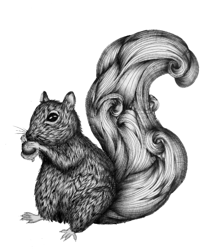 Nuts for a Friend