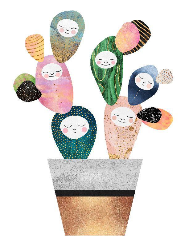 Sleepy Cactus
