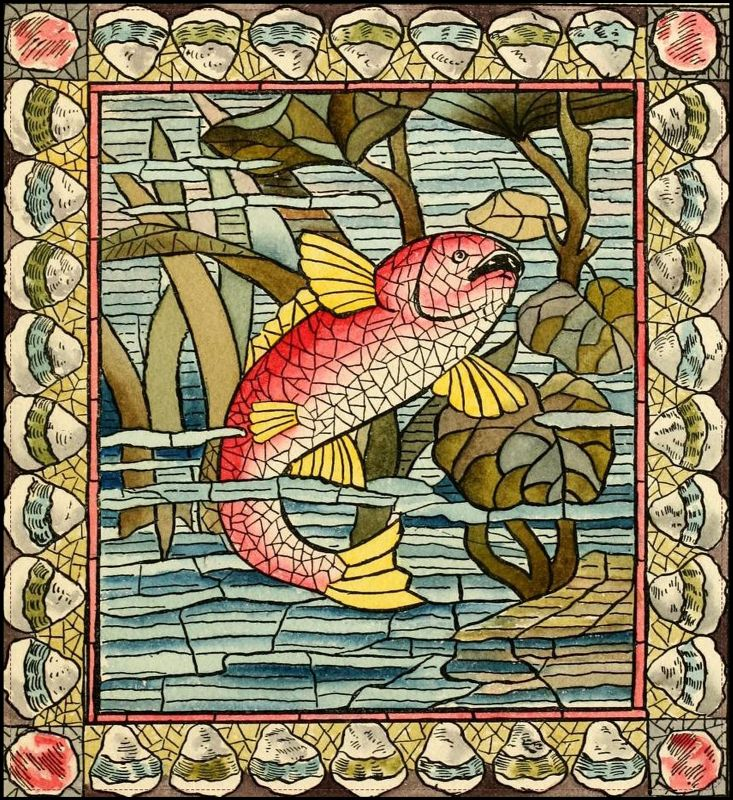 Fish underwater cubism