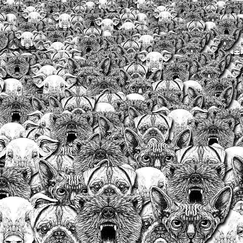 Animal Crowd