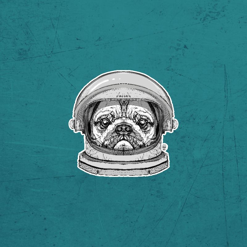 Astronault Pug