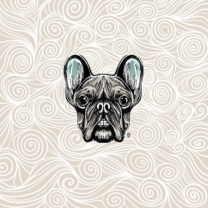 French Bulldog Smilling