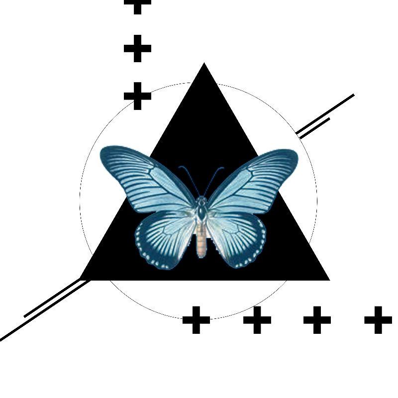 Butterfly  Geometrics