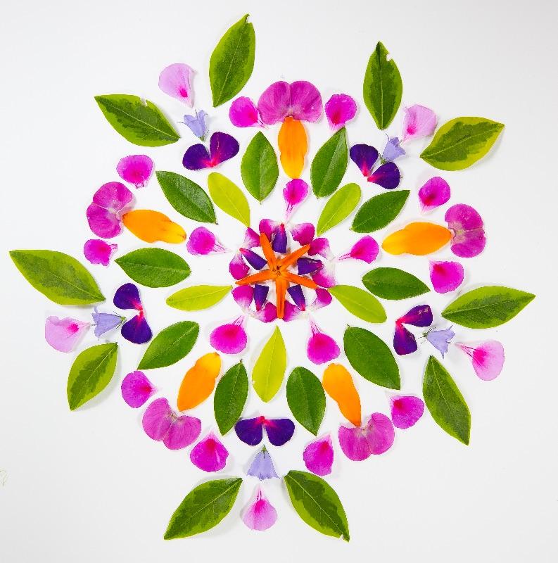 Gaia Gives  Kaleidoscope