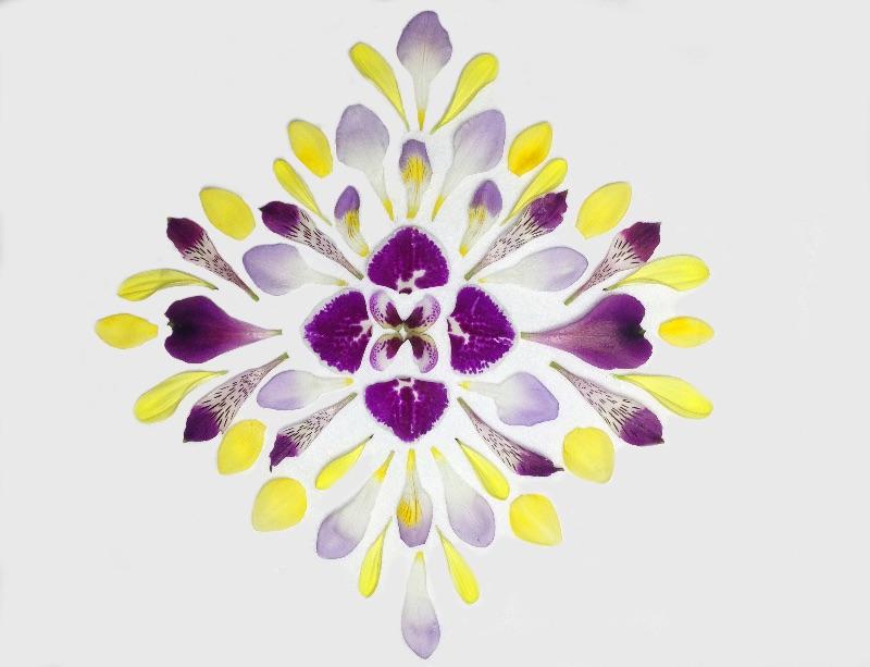 Gaia Gives OrchidMandala