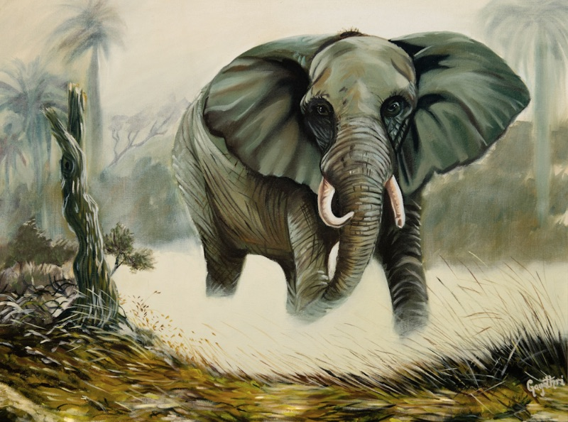 Lone Tusker