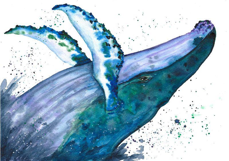 Seafoam Dream