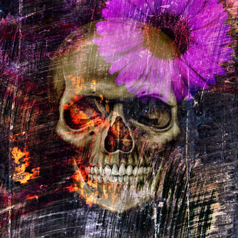 Daisy skull