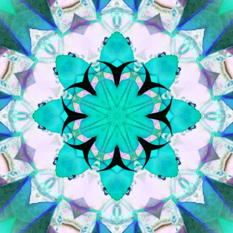 Turquoise Patchwork Petal