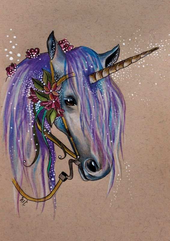 The Magical Faery Unicorn