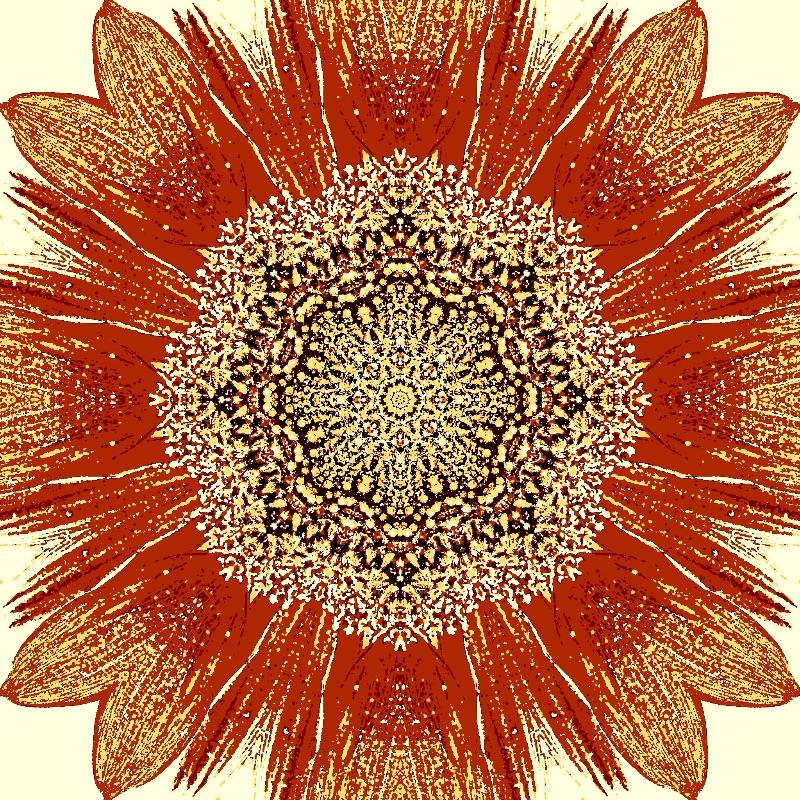 Sunflower Rust