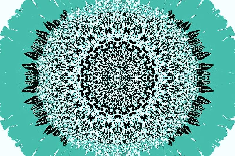 Teal Oval Sunflower