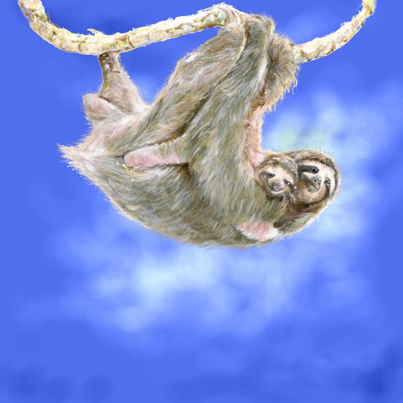 Sloth mom and baby