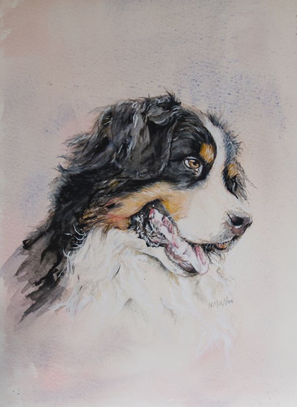 pyrenean mountain dog art