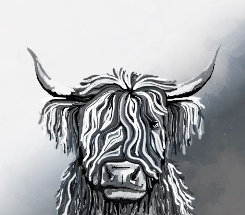 Abstract Highland Cow