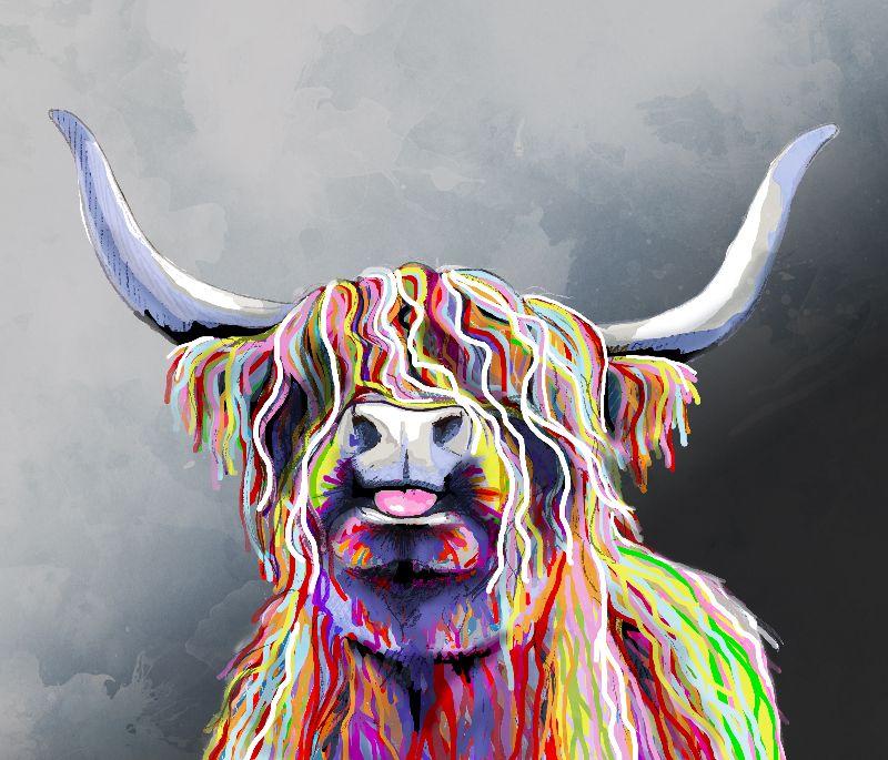 Colourful Highland Coo
