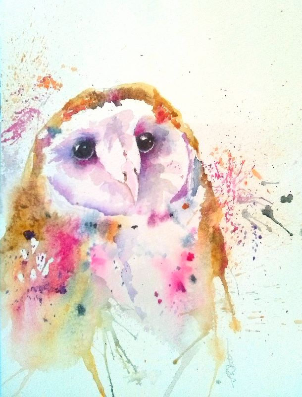 Colourfull Barn Owl