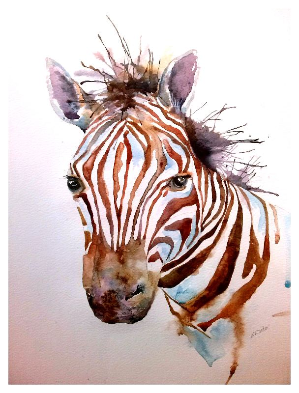 Zebra in Watercolour