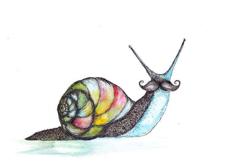 Funky Moustache Snail