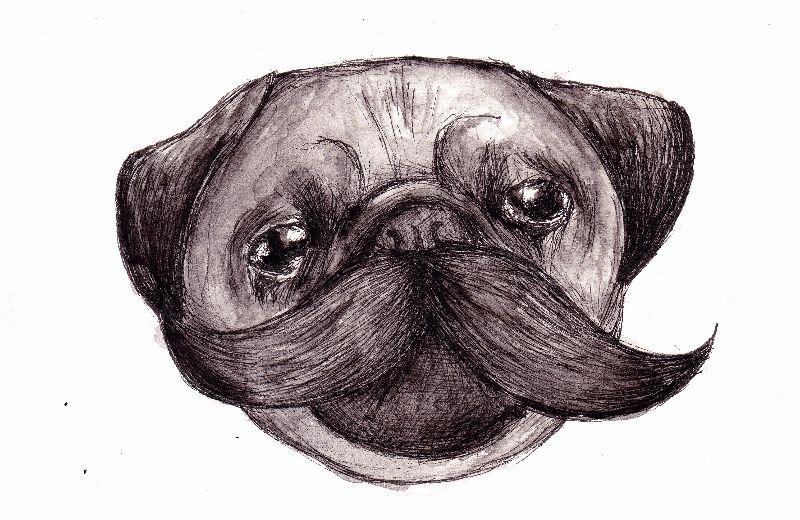 Moustache Pug