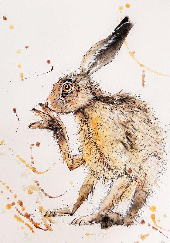 Scratch hare