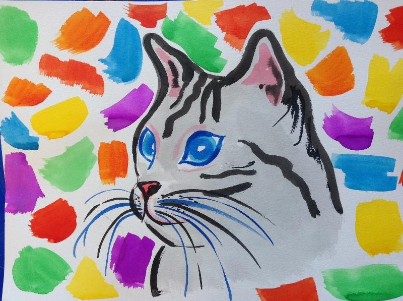 Colouful Cat