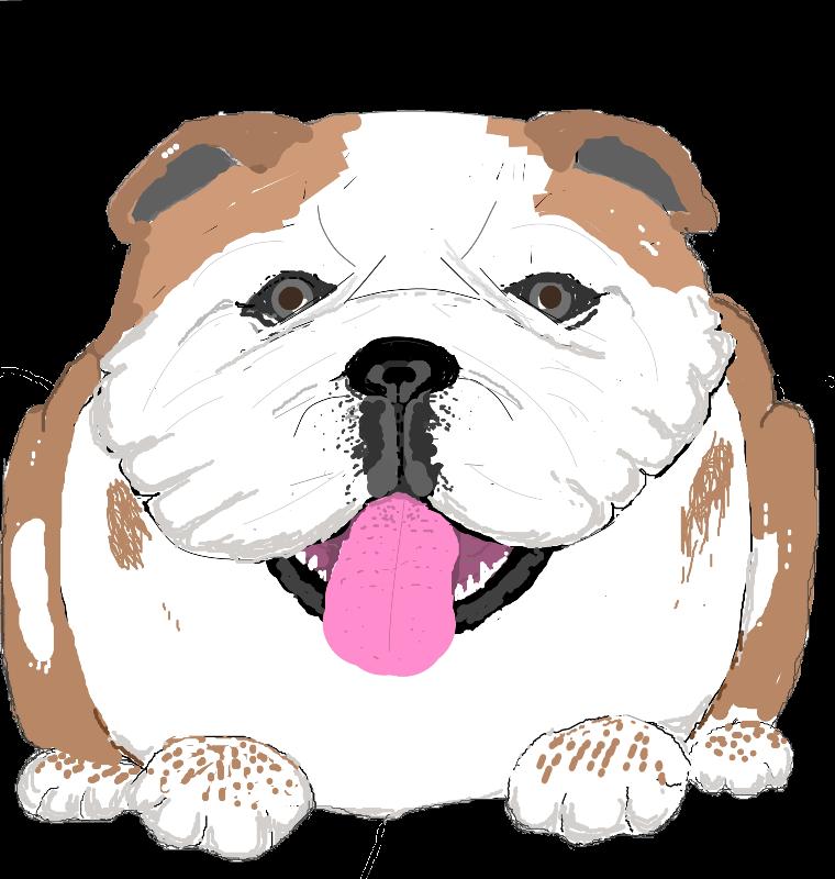 Big Bulldog