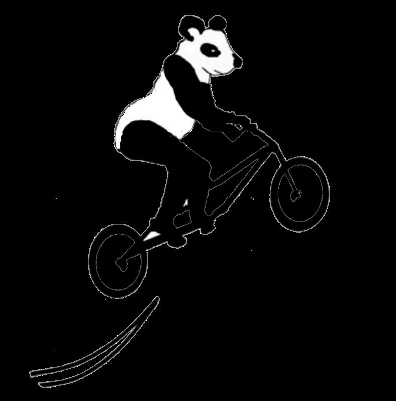 Panda on Stunt Bike